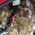 Leopard car seat covers Cotton seat covers - Brown