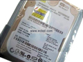 WD 250GB 5400RPM 8MB Cache 2.5 Inch SATA Internal Notebook Hard Drive